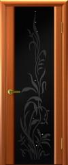 Двери Регионов Эксклюзив 2 тёмный анегри чёрный триплекс рисунок Эксклюзив