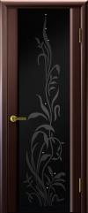 Двери Регионов Эксклюзив 2 венге чёрный триплекс рисунок Эксклюзив